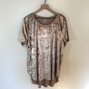 Maurice's Champagne Colored Velvet T-Shirt, 3X
